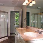 Bathroom Jacuzzi tub and skylight