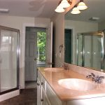 Bathroom Jacuzzi tub and skylight